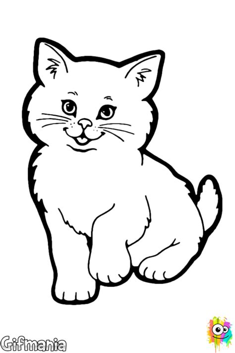 fluffy kitten coloring page fluffy cat coloring page