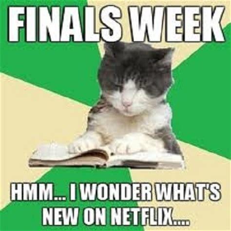 Finals Week Meme - finals meme