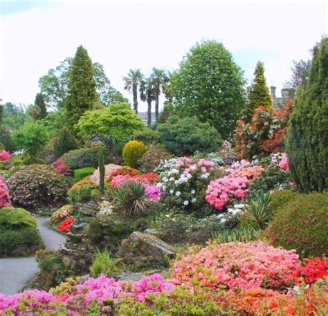 Beautiful Rock Garden Gardening Pinterest Beautiful Rock Gardens