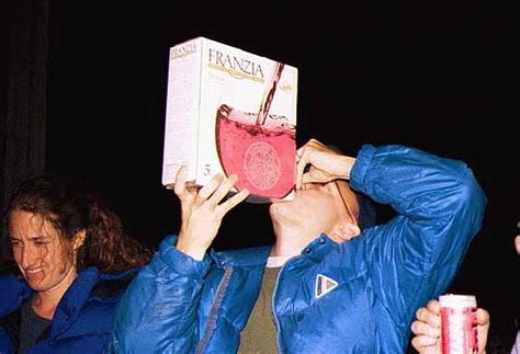dont fear boxed wine  benefits  wine   box