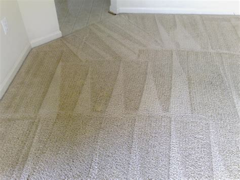 superior carpet and upholstery cleaning superior fabric cleaners superior carpet and upholstery
