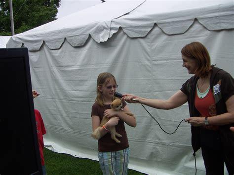 why are puppy mills bad adoption fair doggies