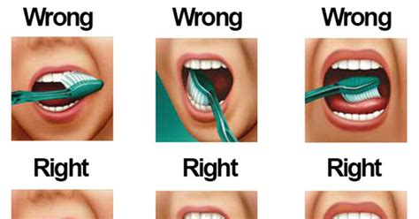 how to brush your s teeth how to properly brush your teeth