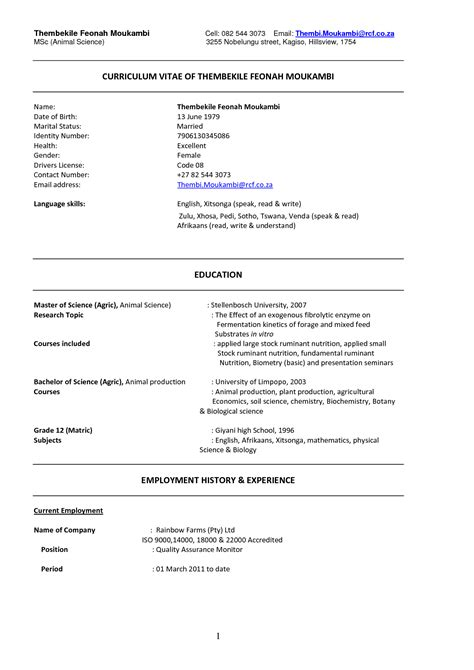 cv template resume examples cv template resume