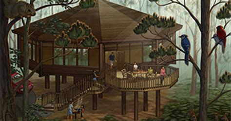 disney saratoga springs treehouse villas floor plan treehouse villas at disneys saratoga springs resort and