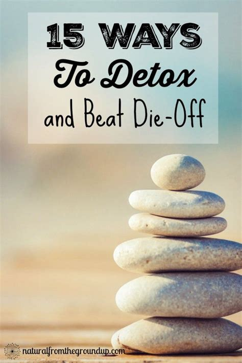 Candida Diet Detox Side Effects by 15 Ways To Detox And Beat Die Facts Beats And The O