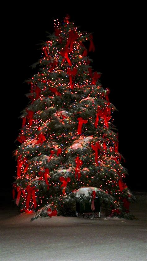 macys holiday tree lighting friday november  pm perfectbostonholiday weihnachten im