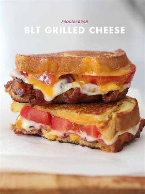 best sandwich recipes top 10 best grilled cheese recipes top inspired
