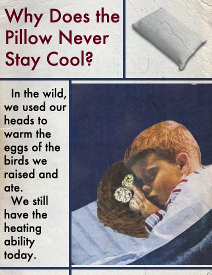 Pillows That Stay Cool All Science Why Does The Pillow Never Stay Cool