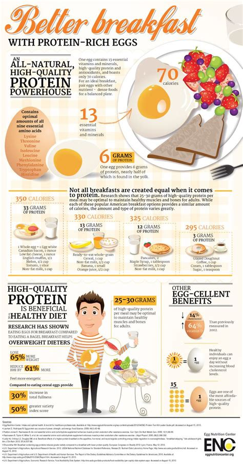 Infographic 24 Daily Habits That Better Breakfast Infographic