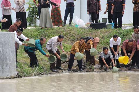 Bibit Ikan Nila Di Semarang institut teknologi sumatera17 500 bibit ikan nila ditebar