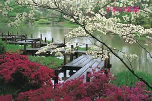 japanese landscaping japan images japanese landscape hd wallpaper and