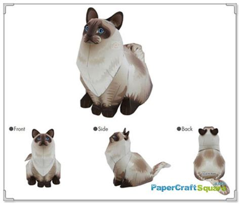Papercraft Cats - ragdoll cat papercraft animal
