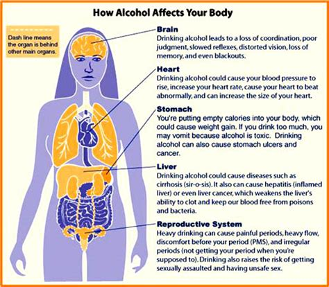 What Daily Detox Looks Like Alcoholism by Fatty Liver Diet Supplements For Your Liver Detox