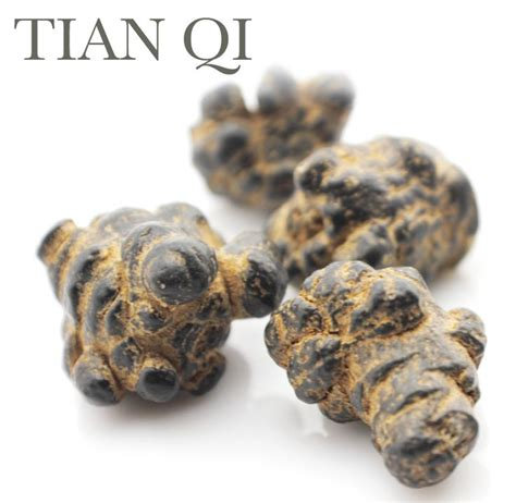 San Qi Ekstrak Radix Notoginseng Tian Qi Notoginseng Root Extract 229 best herbs image gallery images on