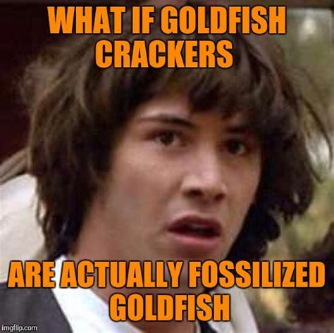 Cracker Memes - goldfish imgflip