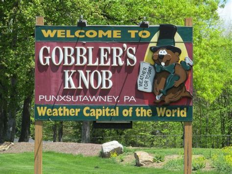 What Is A Knob Gobbler by Gobbler S Knob Picture Of Gobbler S Knob Punxsutawney