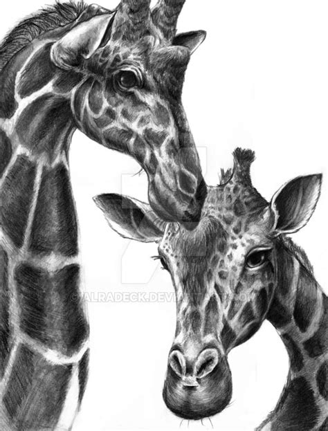 giraffe drawing by alradeck on deviantart