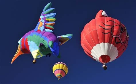 Best Air Beds The Albuquerque International Balloon Festival Pictures
