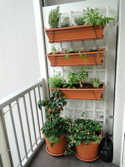 Vertical Garden For Balcony How I Created A Small Vertical Vegetable Garden On My