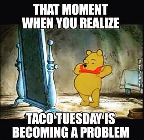 Funny Tuesday Meme - 25 best ideas about taco tuesday meme on pinterest