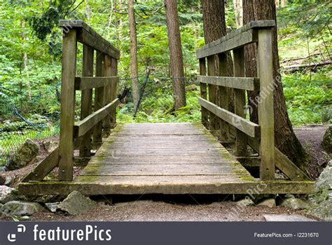 small wooden bridge small wooden bridge in forest image