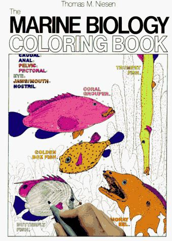 coloring book for biology math depot math books the marine biology coloring book