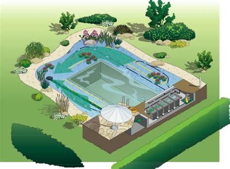 garten anlegen plan der 246 kologische schwimmteich im garten nat 252 rliche