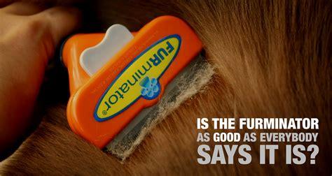 best deshedding tool review furminator for dogs best hair deshedding tool