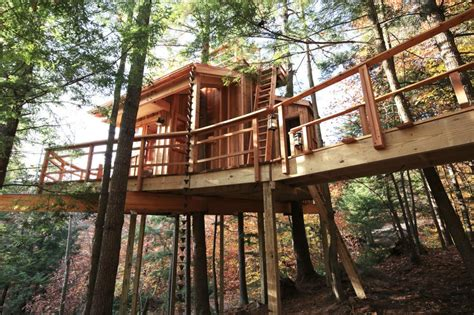 best tree house plans ultimate tree house plans beautiful tree house plan best house design of tree new