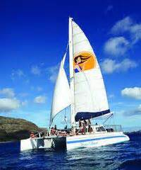 buy a boat oahu big island snorkel tours discount snorkel tours on hawaii