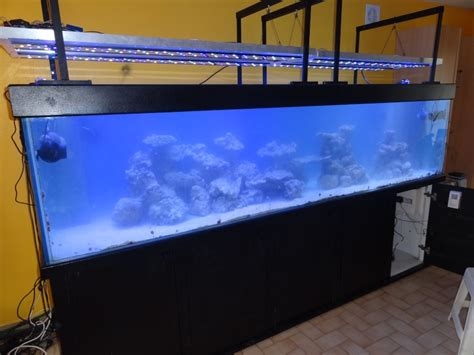 Pompa Aquarium 3m recifal fabrication re a led l 233 clairage