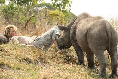 rhino   house programs animal planet