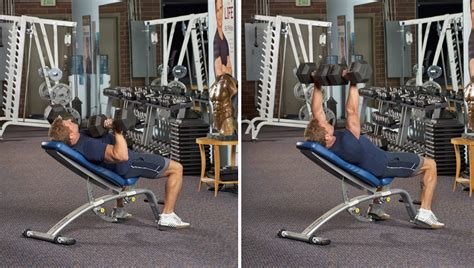 upper bench press a new look at bill phillips upper body workout bill