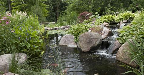 aquascape your landscape designing your pond