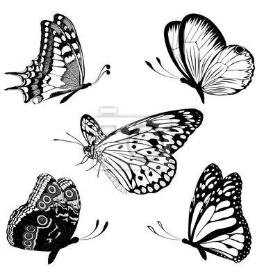 black and white butterfly tattoos 24 best doodle butterfly outline tattoos images on