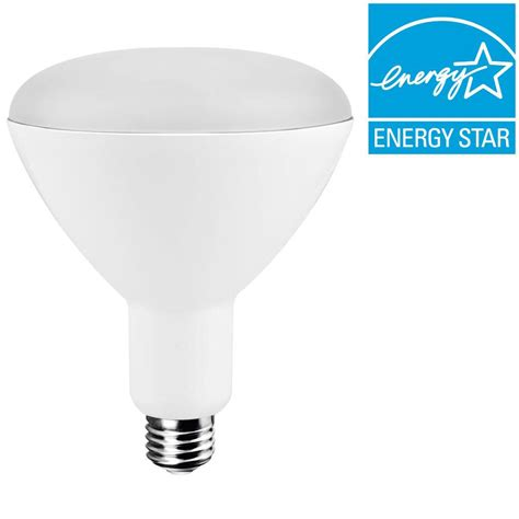 ecosmart light bulbs warranty ecosmart 75w equivalent soft white 2 700k br40 dimmable