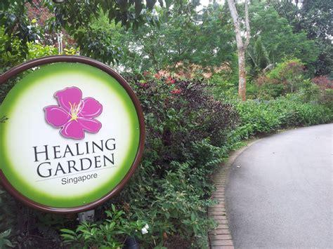 Healing Garden by Healing Garden