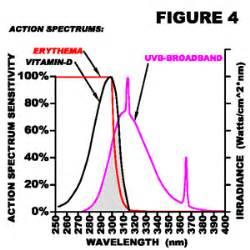 uvb l vitamin d les de phototh 233 rapie pour la vitamine d solarc