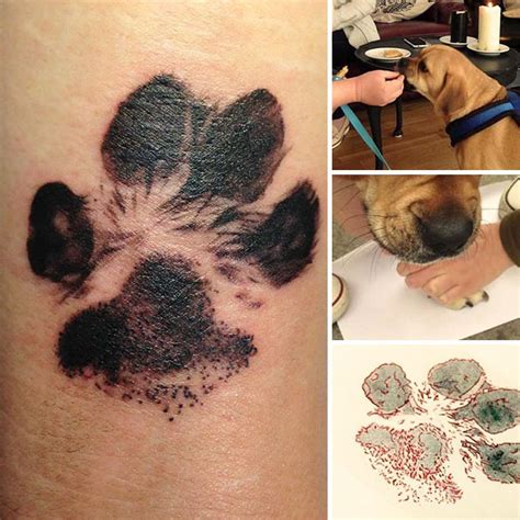 the dog paw print tattoos are now on trend and they re