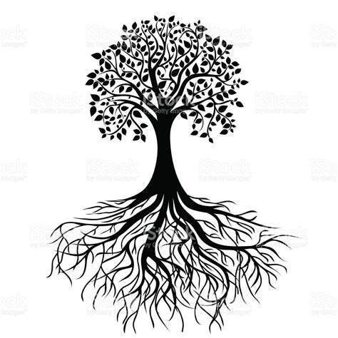 root art design zoetermeer whole black tree with roots isolated white background