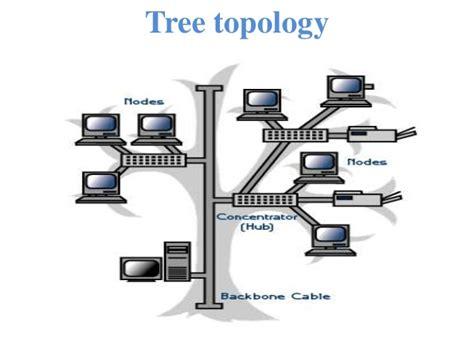 tree topology diagram presentation on topology by prince kushwaha 0902 ec101053