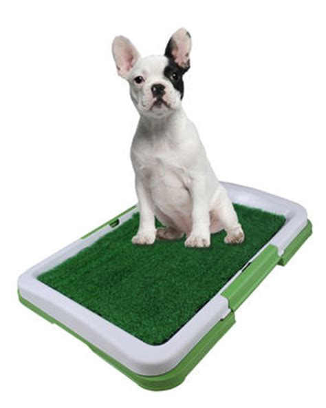 potty pad indoor doggie bathroom potty pad indoor doggie bathroom just 14 95