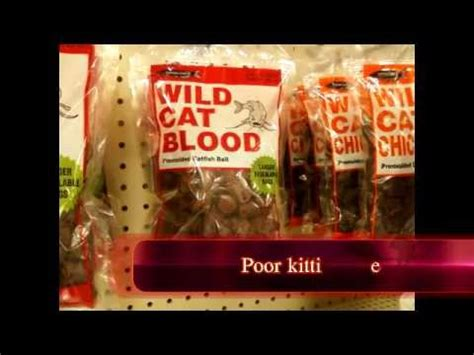 5 Strange Things That You Can Buy And Wear by The Strange Things You Can Buy At Walmart Part 3