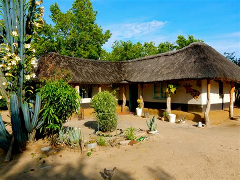 linkwasha camp hwange national park zimbabwe boutique