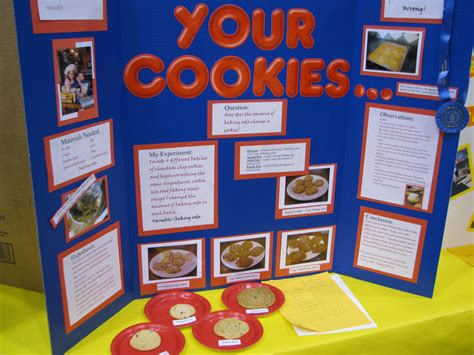 science fair information blessedmomof5 s weblog