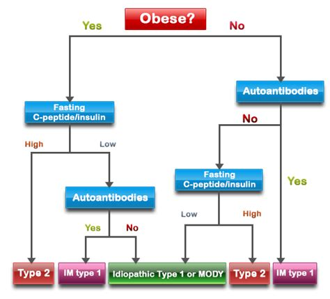 types of flowcharts hypoglycemics definition diagnosing type 2 diabetes