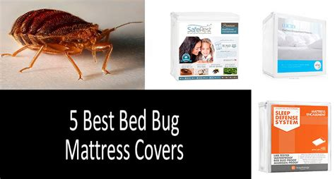 Bed Bug Mattress Covers How Do They Work