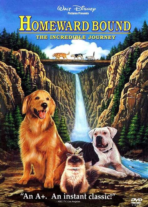 homeward bound dogs homeward bound iii or jurassic park 4 jurassic park 1 3d pony tricks