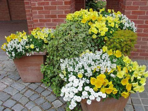 Hgtv Gardening Ideas Container Garden Ideas Hgtv